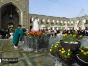 Fotos: Espectacular alfombra de flores de patios y el interior del santuario del Imam Rida (AS)